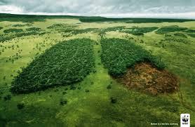 biodiversidad 2